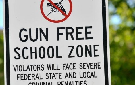 University School and Gun Control