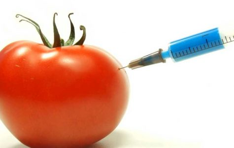 A GMO Wake Up Call