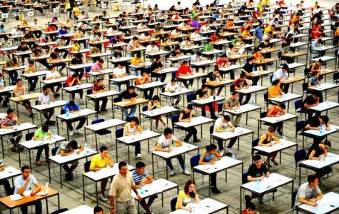 Detesting Standardized Testing